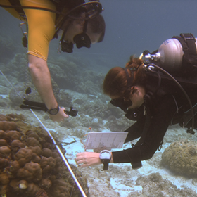marine habitat survey training is part of all our expeditions