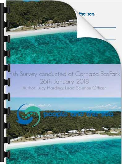 Carnaza Fish Survey, January 2017